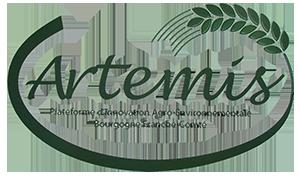 Logo réseau Artémis